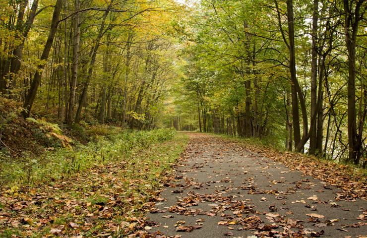 Samuel Justus Trail