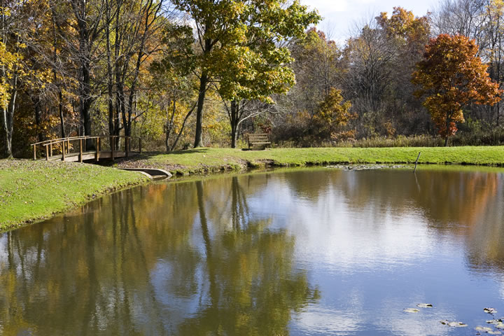 Morrison Park Pond
